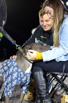 """Local rescue dog Ollie is pet by the audience, as he sports """"doggy pajamas"""" for the second year in a row."""